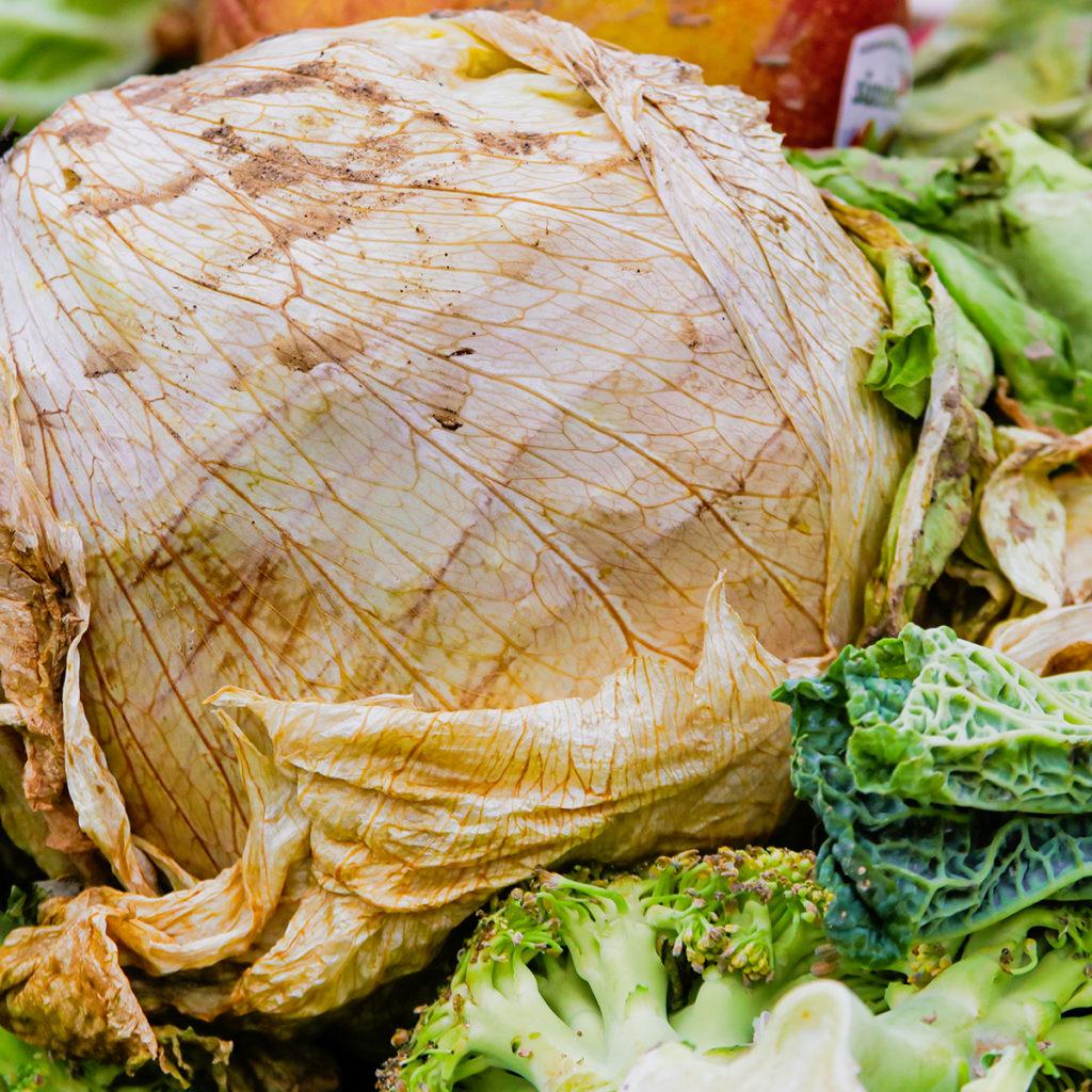 Unter äußeren Einflüssen wie Luft wird Salat mit der Zeit welk und braun.